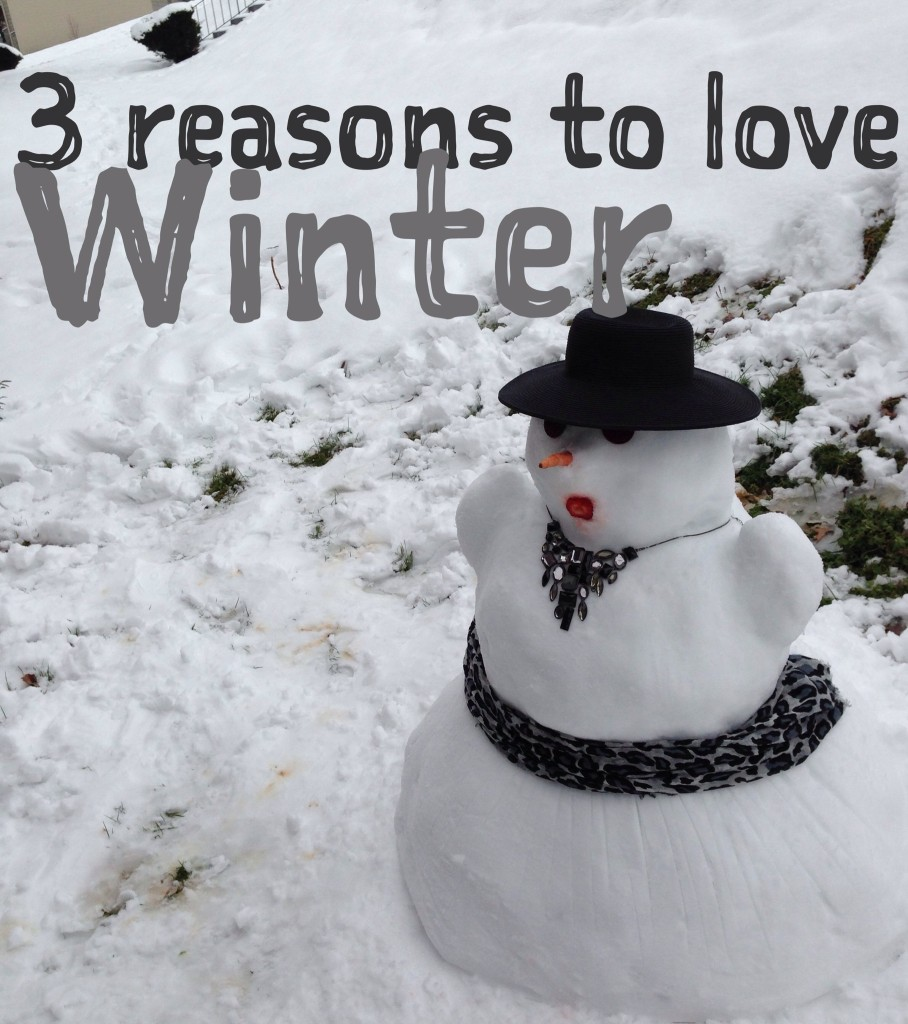 snow day, snowbir, knoxville, snowmageddon, snow woman, how to decorate a snow man, playing in the snow, winter, reasons to love winter